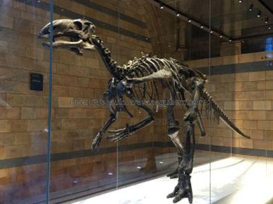 uno de los dinosaurios