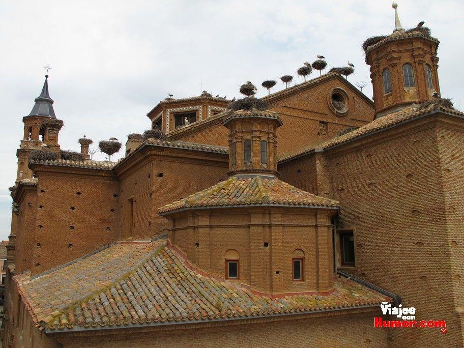 colonia de cigüeñas iglesia de san miguel alfaro