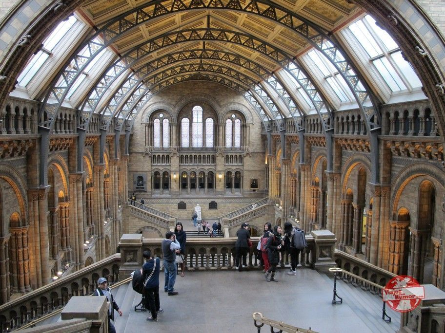 museo de historia natural londres