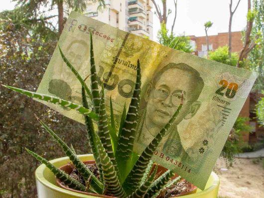 precio viaje tailandia