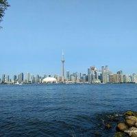 Cómo moverse y cosas que hacer en Toronto durante una escala