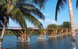 puente-palma