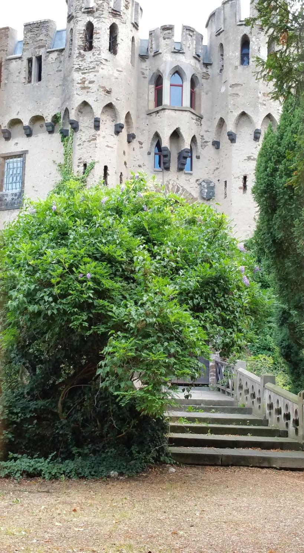 Burg Lahneck (Alemania)