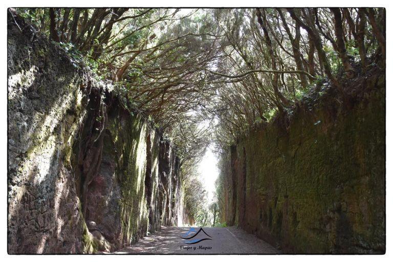 Mirador-Camino-viejo-al-pico-del-ingles