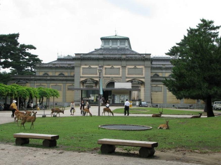 sitios-que-no-te-puedes-perder-en-japon-nara-museum