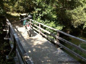 Moto forestales