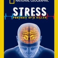 Stress: Portrait of a Killer | Notes & Review