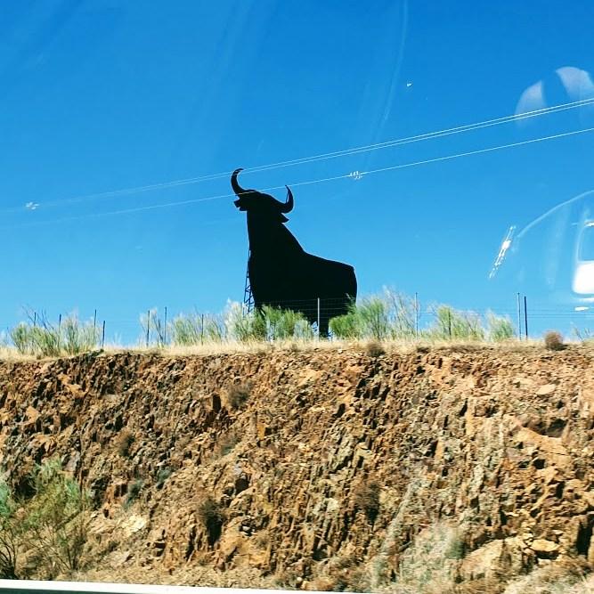 MOOTTORITIE AURINKOON, kuuluisa härkä