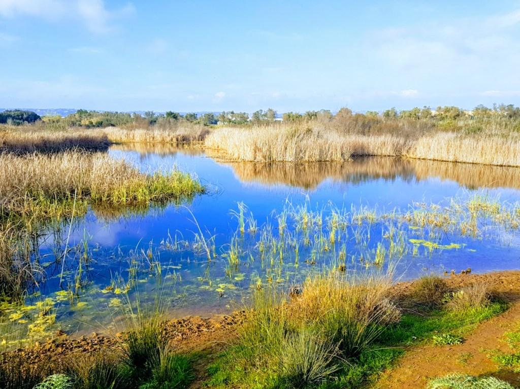 Onnistunut perheloma Algarvessa Parque Ambiental de Vilamoura