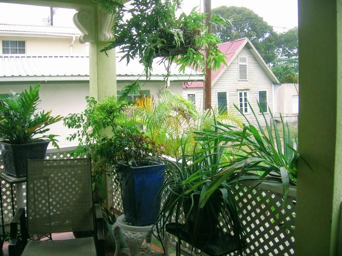 Diginomadien maailma - Diginomadi ja korona, Barbados