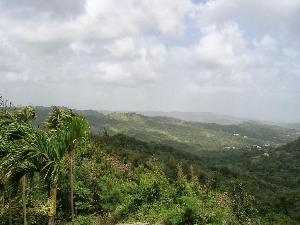 Elämäni paras lomamatka Barbados Flower Forest Botanical Gardens