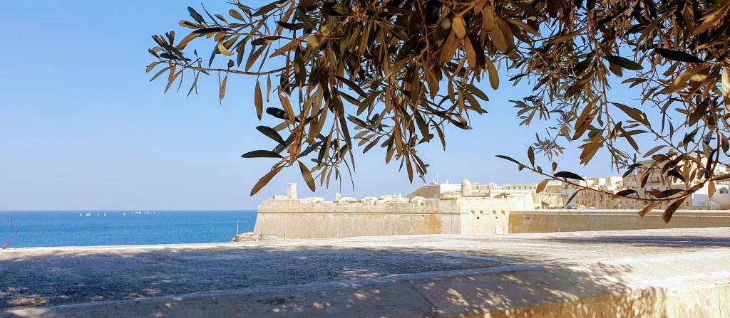 Malta Vs Gozo, Fort St Elmo
