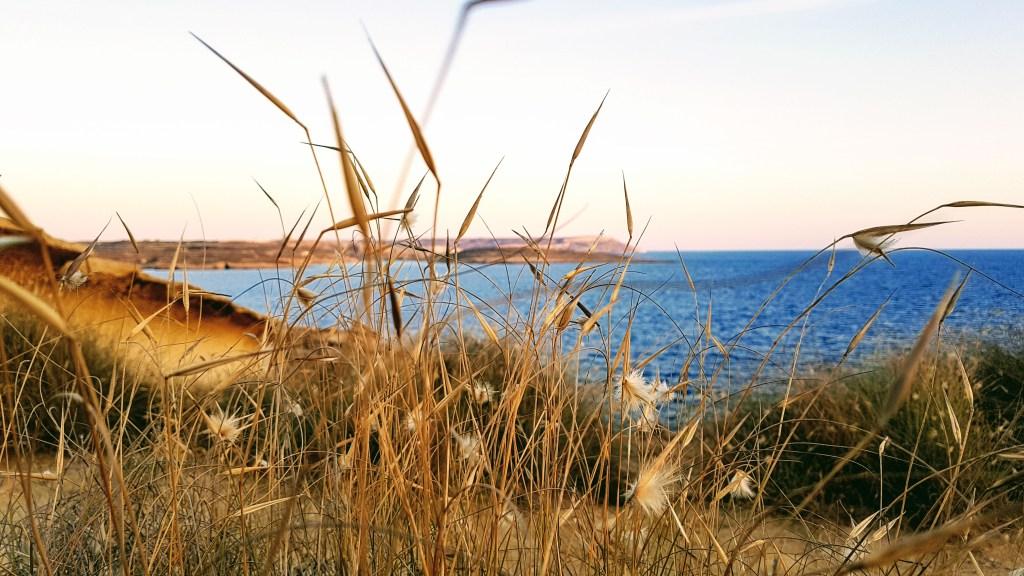Maltan kesä