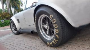 aluminum-cobra-with-knock-off-wheels-954-633-8901-3