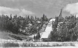 Ski Jump - 32