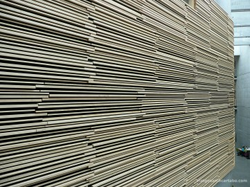 Centre Hof Textura fusta