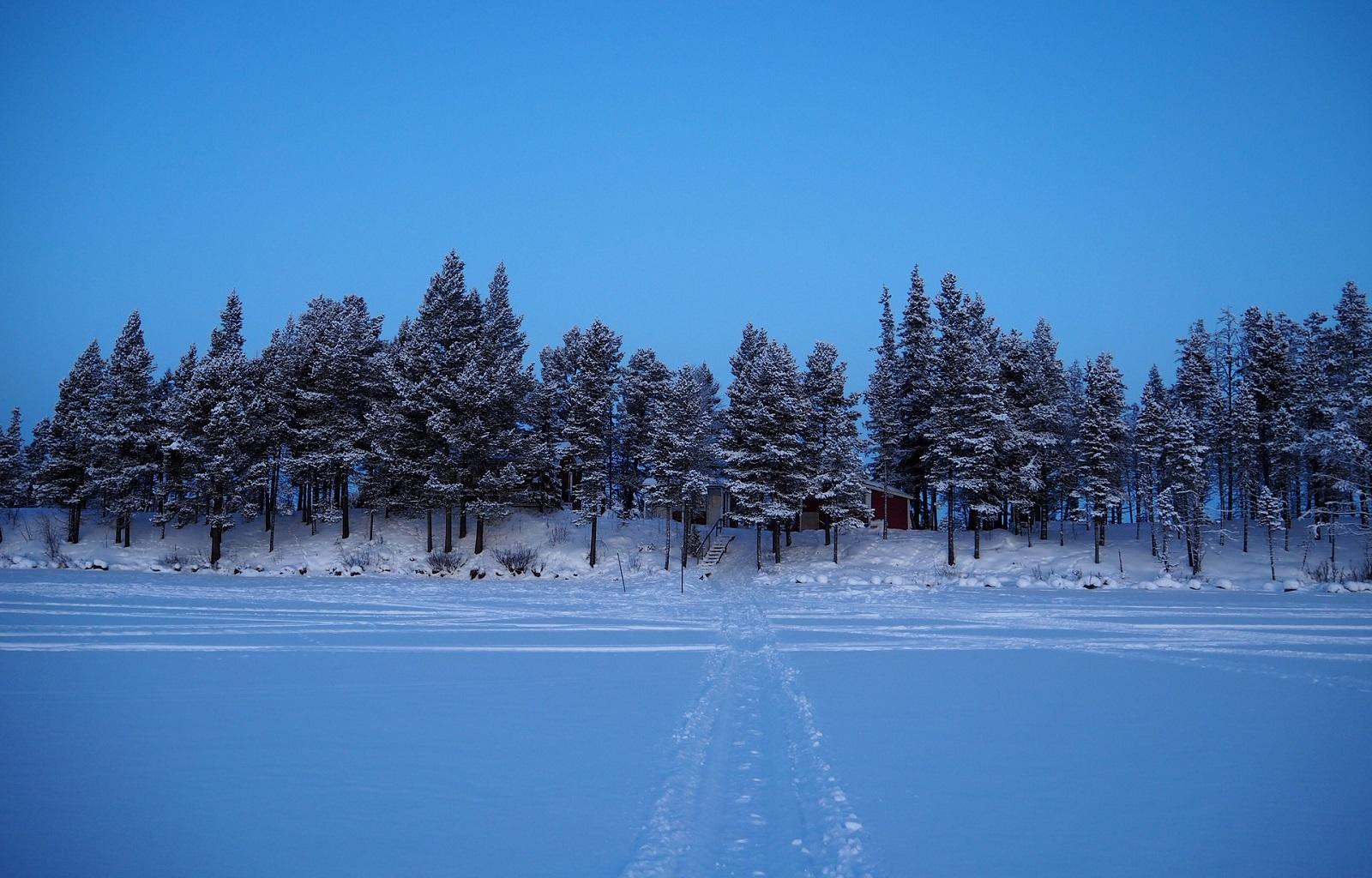 laponia-hivern