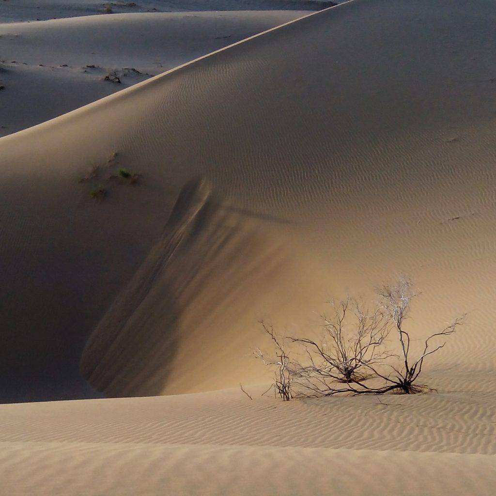 2016-07-21-dunes-del-desert-de-maranjab-2