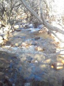 curso de río s