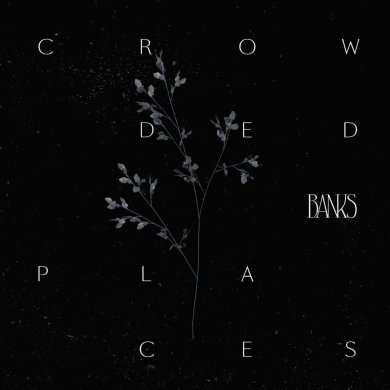 Banks Crowded Places Cover