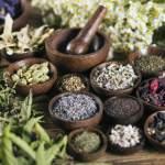 Heal Around the Chinese Medicine Body Clock
