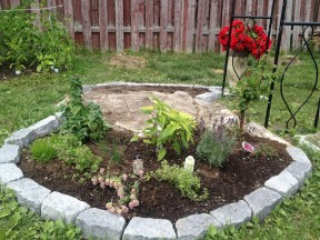 Here you can see already started herb garden on the left side of the old tree trunk - how it looked in the beginning of August, 2015. There already is: chives, lemon thyme, decorative marjoram, lavender, camomile and pineapple sage.There is also clematis, which I have added to this garden to decorate metal gate I have placed in front of the trunk.