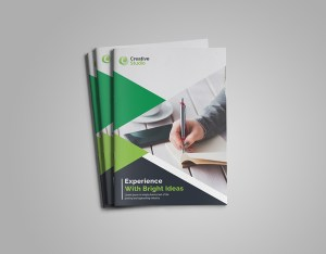Emerald Bi-Fold Brochure Template