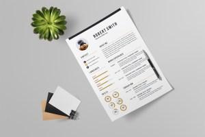 Contemporary Printable Resume Design