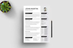 Pro Print Resume Template
