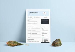 A4 Minimalist Resume Template