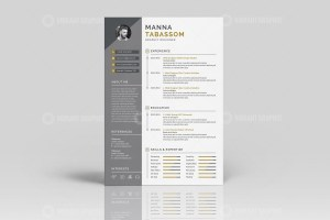 Creative Resume CV Templates
