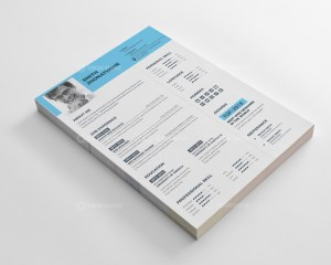 Classic Resume CV Design Templates