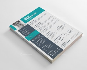 Modern Resume CV Design Templates