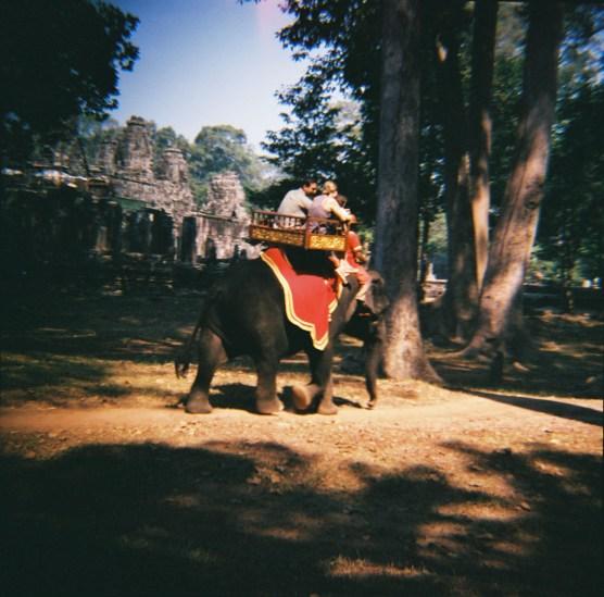 Elephants, Angkor Wat