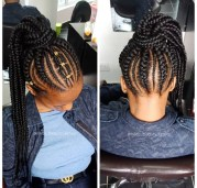 Braided Feedin Updo Protective Hairstyle
