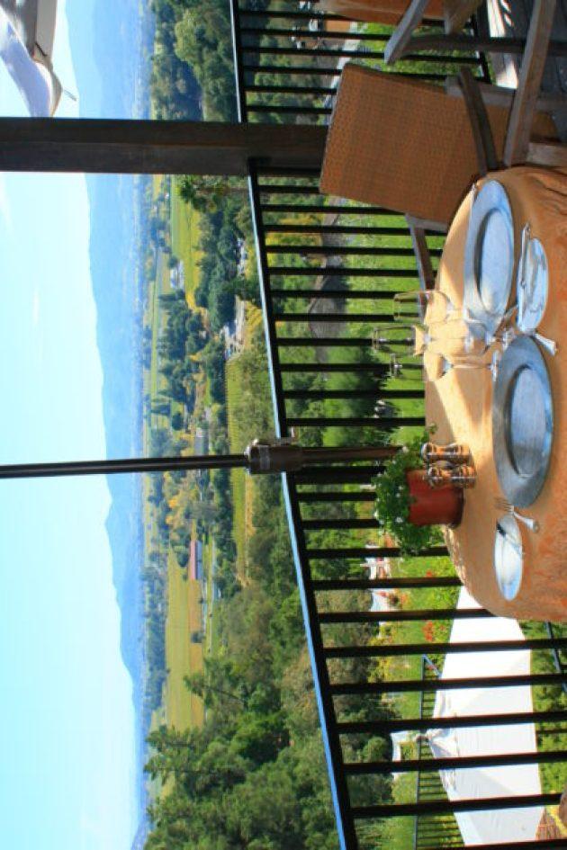 Almoço hamonizado com vinhos em Napa Valley