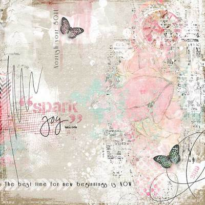 CR-Jana-Spark-Joy