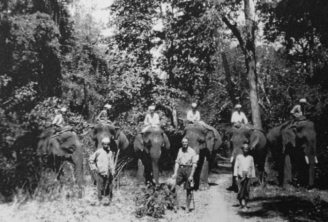 1st clan of elephants