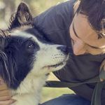 The Health Benefits of Having A Canine Companion