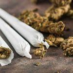 The Latest Trends In Marijuana Use