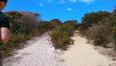 Coast Track: Two Sands