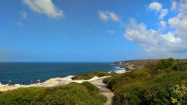 Coast Track: First Views of the Sea