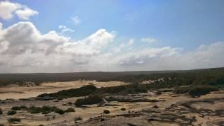 Coast Track Overlooking Marley Beach: Sand Dunes