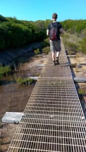 Coast Track: Steel Walkway
