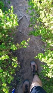 Coast Track: Staring at Shoes