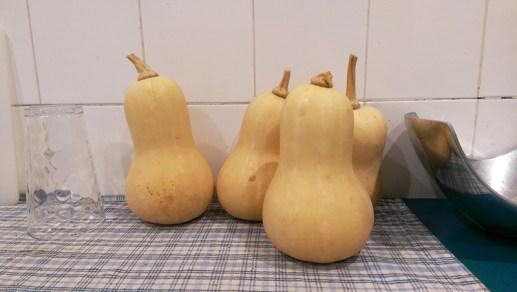 Homegrown Pumpkins