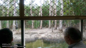Hartley's Crocodile Adventures, June 2015: Bird at Lagoon