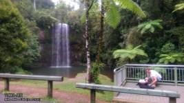 Millaa Millaa Falls, June 2015