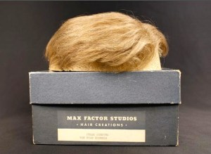 sinatra wig van ryan's express