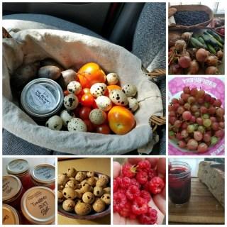 Garden Produce 2017